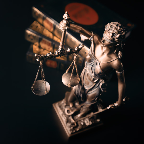 SARS Role In The Criminal Justice System